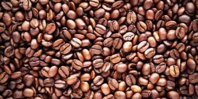 آئیوری کوسٹ کی کافی اینڈ کوکوا کونسل کے سیزن 2019-20 ء کے لیے 9 لاکھ ٹن ..