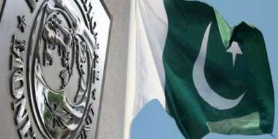 آئی ایم ایف بورڈ کے اجلاس سے پاکستان کا ایجنڈا نکال دیا گیا ہے، سلیم ..