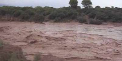 ریاض میں طوفانی بارش ، بڑی شاہرائیں دریا کی شکل اختیار کرگئیں
