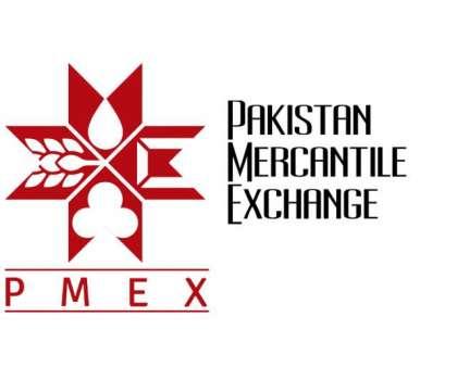 پی ایم ای ایکس کموڈٹی انڈیکس 3,398 کی سطح پر بند