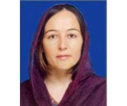 عمران خان کے فیصلے کیخلاف عدالت جائیں گے،فوزیہ بی بی