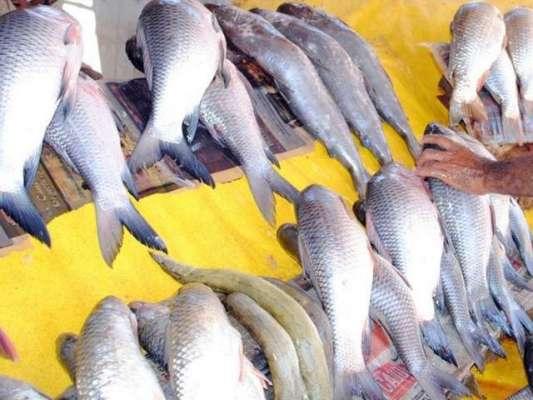 سمندری خوراک کی برآمدات میں 10ماہ کے دوران 17.41فیصد اضافہ