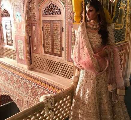 روینہ ٹنڈن کی شادی کی تقریب میں لی گئی تصویر انسٹا گر ام پر شیئر