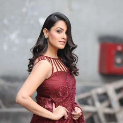 کیریئر کے آغاز میں بعض لوگوں نے اچھا سلوک نہیں کیا، انیتا حسن اندانی
