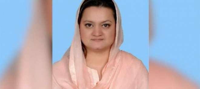 پاکستان ویسے ہی چل رہاہے جیسے پشاور کی میٹرو،مریم اورنگزیب