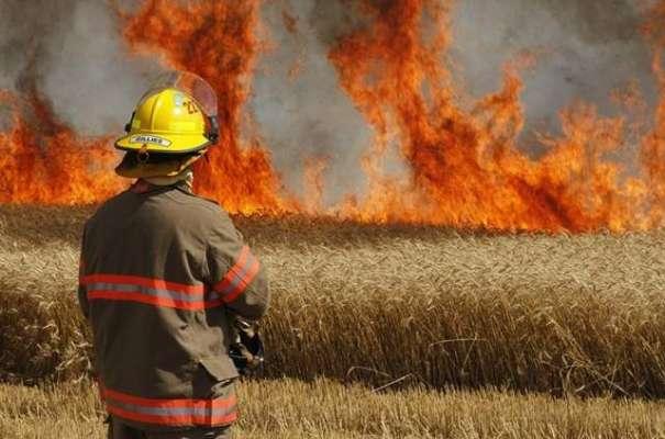 فیصل آباد:دو مختلف مقامات پر گندم کی کھڑی فصل میں آگ بھڑک اٹھی، فائربریگیڈ ..