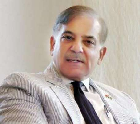 وزیراعلیٰ پنجاب محمد شہبازشریف سے وفاقی وزیر توانائی اویس احمد خان ..