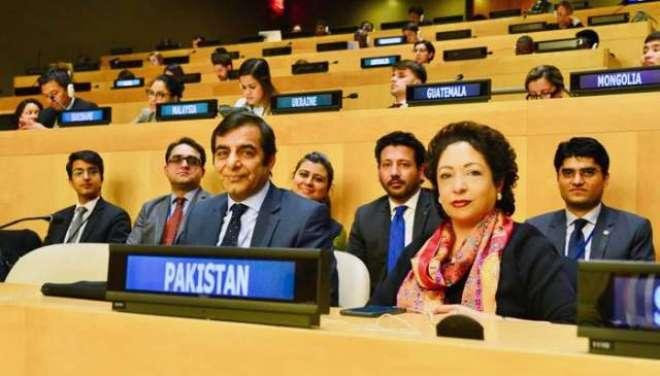 پاکستان اقوام متحدہ کی غیر سرکاری تنظیموں کی کمیٹی کے ایگزیکٹوبورڈ ..
