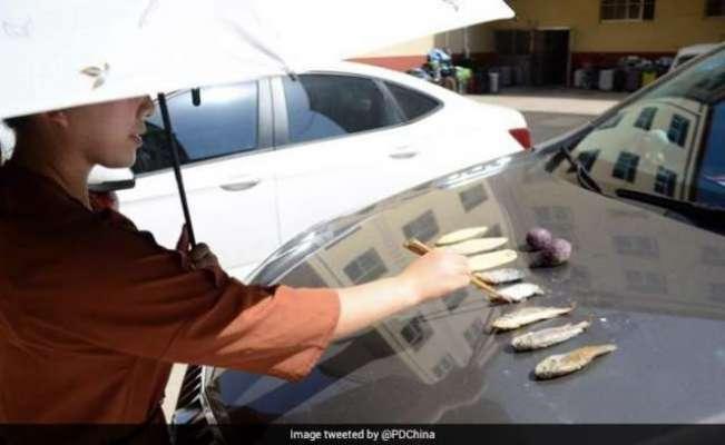 40 ڈگری سینٹی گریڈ کی گرمی میں خاتون نے  کار کے بونٹ پر مچھلی فرائی کر ..