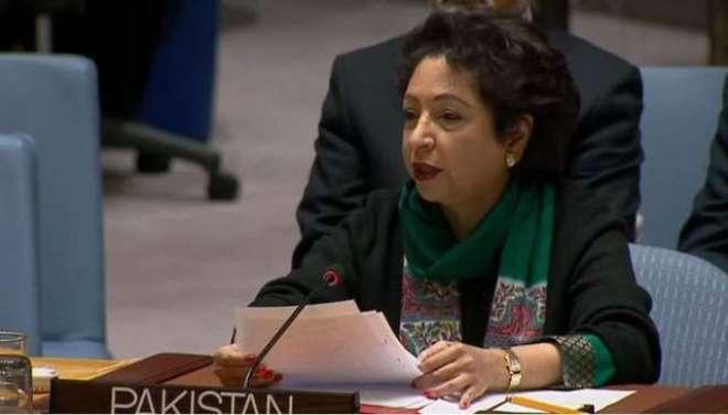 پاکستان ووٹنگ کے ذریعے اقوام متحدہ کی 2 غیر سرکاری تنظیموں کی کمیٹی ..