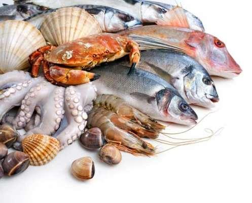 رواں مالی سال کے ابتدائی 8مہینوں میں سمندری خوراک کی برآمدات میں 10.18فیصد ..