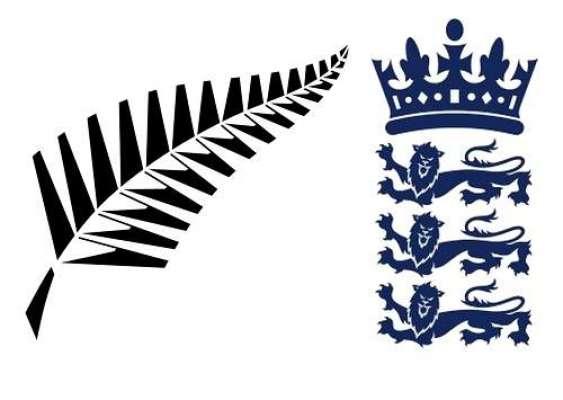 انگلینڈ نے دوسرے ون ڈے میں نیوزی لینڈ کو 4 وکٹوں سے شکست دیدی