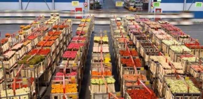 غذائی اشیا کی برآمدات میں رواں مالی سالے کے پہلے نو ماہ کے دوران 28 ..