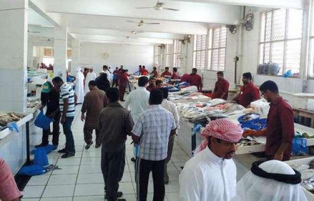 متحدہ عرب امارات نے مچھلی منڈیوں پر بھی ویلیو ایڈڈ ٹیکس نافذ کر دیا