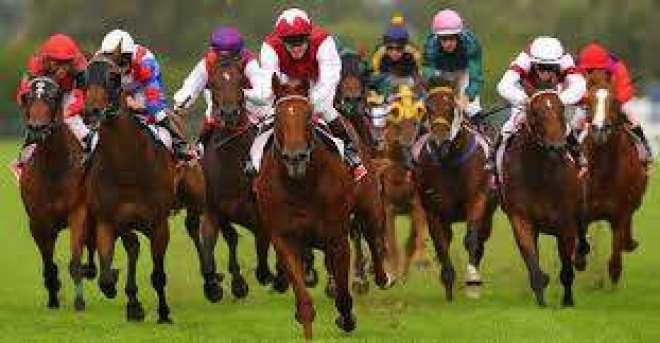 ہانک کانگ ،ملکہ الزبتھ دوئم کپ کے گھوڑ دوڑ مقابلہ پاکستانی گھوڑے نے ..