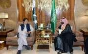 وزیراعظم عمران خان سعودی عرب دورے پر عمرہ کرنے نہیں بلکہ قرضہ لینے ..