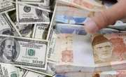 انٹر بینک میں ڈالر مزید 25پیسے جب کہ اوپن مارکیٹ میں 30پیسے کی کمی سے ..