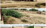 تاندلیانوالہ کا اکلوتا کرکٹ سٹیڈیم انتظامیہ کی بے حِسی کے باعث صحرا ..
