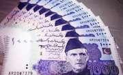 یورپی ممالک میں مقیم پاکستانیوں کی ترسیلات زرمیں2.33 فیصد اضافہ