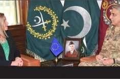 آرمی چیف سے نمائندہ خصوصی یورپی یونین کی ملاقات