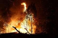 آسٹریلیا کے جنگلات میں لگی آگ بے قابو ، تباہ کن موسمی صورتحال کا الرٹ ..