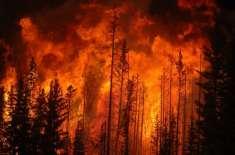 ملکہ کوہسار مری کے جنگلات میں خوفناک آگ بھڑک اٹھی