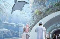 اومان میں مشرق وسطیٰ کا سب سے بڑا ایکیوریم عوام کے لیے کھول دیا گیا