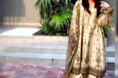 اُشنا شاہ نے کراچی کے نکاسی آب کے ناقص پر آواز اٹھا دی