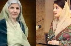 مریم نواز کا فاطمہ جناح سے موازنہ کرنے پر سوشل میڈیا پر بحث چھڑ گئی