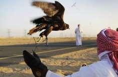وفاقی حکومت نے بلوچستان کے 15سے زائد علاقوں میں شکار کیلئے قطر کے شہزادے ..