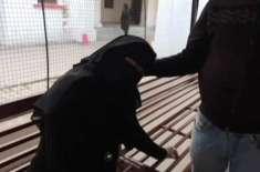 مہمان کے کھانا نہ کھانے پر میزبان کی بیوی کو طلاق نہیں ہوگی،سعودی امام