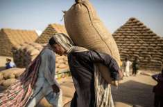 حکومت نے چینی کے بعد 20 لاکھ ٹن گندم فوری درآمد کرنے کی اجازت دے دی