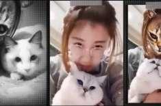 بلیاں موبائل ایپلی کیشنز سے سخت ناراض