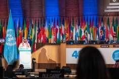 ثقافت اور فنون لطیفہ ویژن 2030 کے پروگرام کا حصہ ہیں. سعودی وزیر