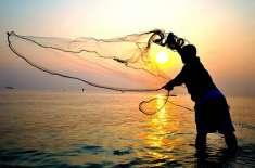 پاکستان بھر میں عالمی یوم ماہی گیری منایاگیا