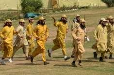 حکومت نے انصار الاسلام پر پابندی عائد کر دی