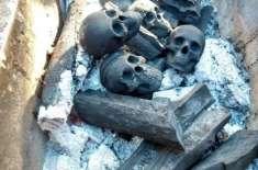 اب باربی کیو کے شائقین جاپانی فنکار  کے  کھوپڑی نما کوئلے  جلا سکیں گے