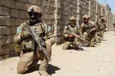 افغانستان، صوبہ ہلمند میں فوج کی کارروائی میں 5 طالبان ہلاک