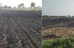 کھیتوں میں لگے بجلی کے پول میں آگ لگنے سے لاکھوں روپے مالیت کی تیار ..