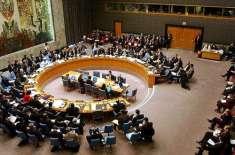 سکیورٹی کونسل نے پلوامہ حملے پر بھارتی موقف مسترد کر دیا