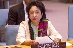 '' تم ایک چور ہو اور پاکستان کی نمائندگی کی حقدار بھی نہیں ہو ''