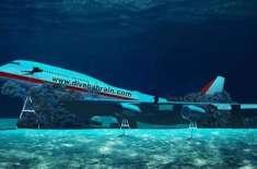 یہ ملک زیرآب تھیم پارک کےلیے  ایک جہاز ڈبوئے گا