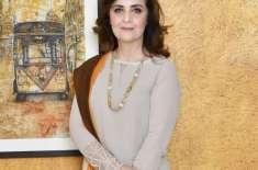 چڑیلز' کے بولڈ کردار پر سب سے زیادہ تنقید شوبز والوں نے کی، حنا خواجہ