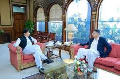 وزیراعظم عمران خان سے اسد عمر کی ملاقات ،