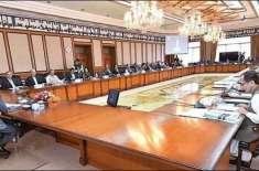 وفاقی کابینہ نے کامیاب نوجوان پروگرام کے تحت نوجوانوں کے لیے ملکی تاریخ ..