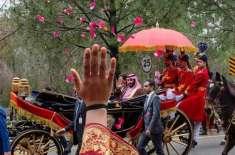 سعودی ولی عہد کی ایوان صدر جاتے ہوئے خاتون کے سلام کا جواب دینے کی تصویر ..