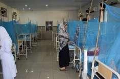 پشاورکے2تدریسی ہسپتالوں میں ڈینگی مریضوں کی تعداد83ہو گئی،  انتظامیہ