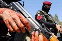 ایک ہاتھ پر مہندی اور دوسرے ہاتھ میں بندوق، پاکستانی خاتون پولیس اہلکار ..