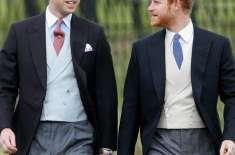 شہزادہ ہیری ذہنی بیماری کا شکار ہیں،شہزادہ ولیم کا تخت نشینی کے بیان ..