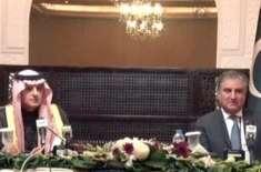20 ارب ڈالر کی سرمایہ کاری پہلا مرحلہ ہے' مستقبل میں پاکستان میں مزید ..